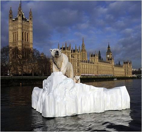 polar-bear-on-thames-52
