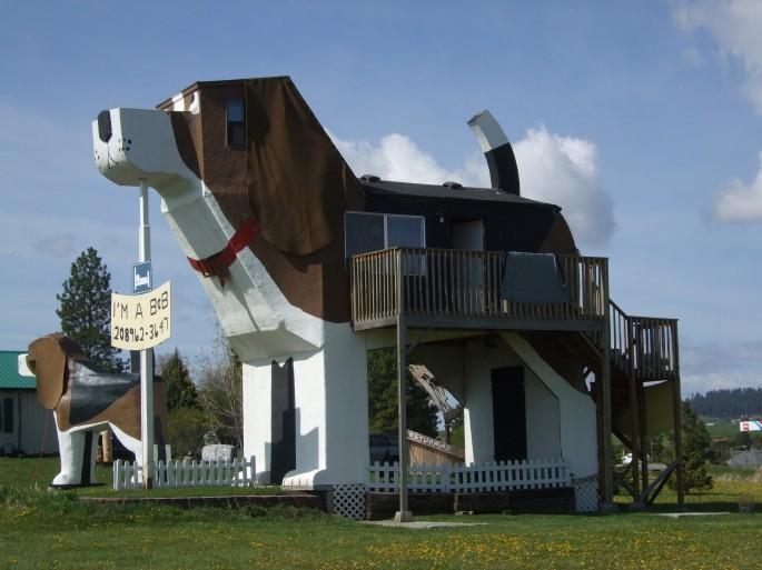 Dog-Inn-3-685x513