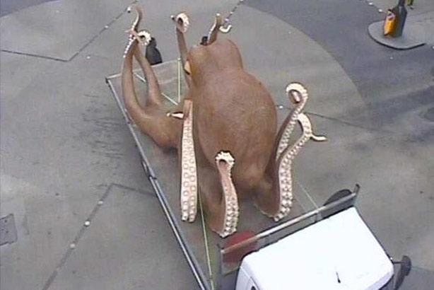 octopusTFL-20140603124045227