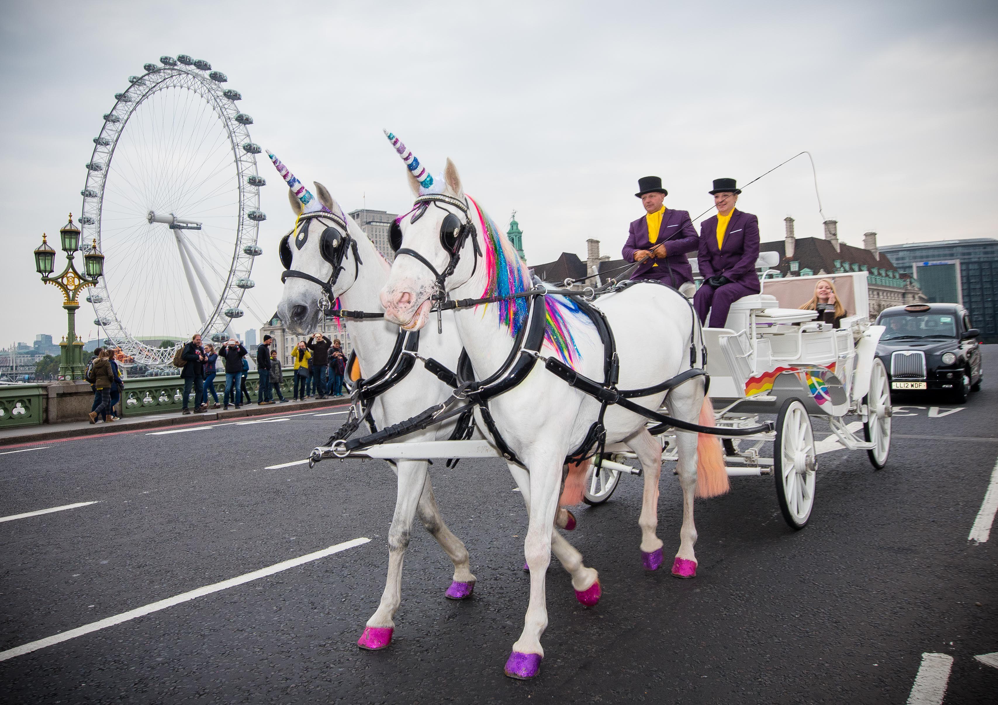 Unicorn cab