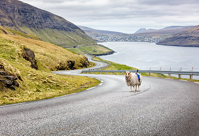 faroe-islands21